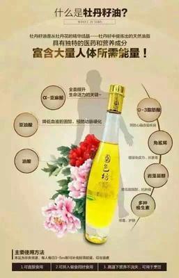 山东省菏泽市牡丹区牡丹籽油