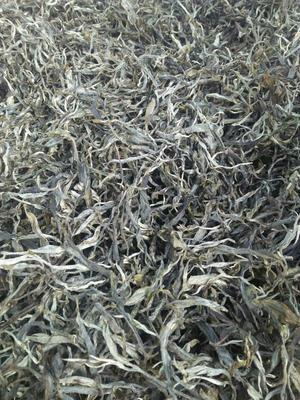 这是一张关于云南大树茶 散装的产品图片