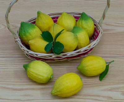 广西玉林香水柠檬 3.3 - 4.5两