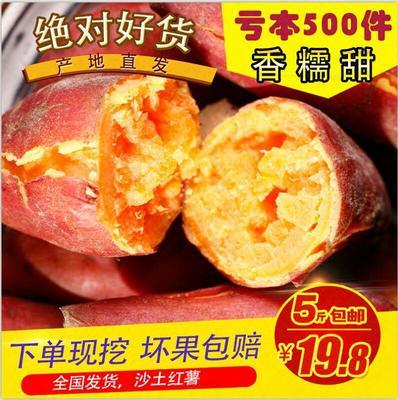 这是一张关于沙地红薯 6两以上 红皮 全国发货 五斤包邮的产品图片