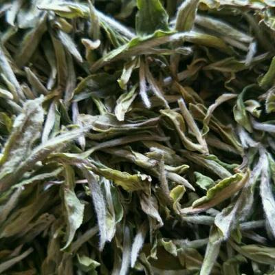 福建宁德白牡丹茶 袋装 恒温长期保存 特级 2017年野生白牡丹福鼎白茶玉叶红茶叶