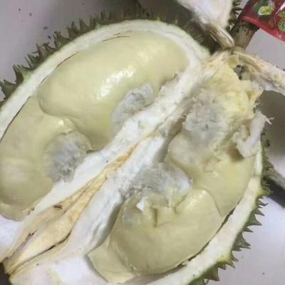 这是一张关于猫山王榴莲 2 - 3公斤 60 - 70%以上的产品图片