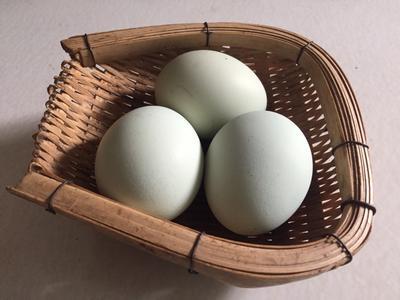 云南红河土鸡蛋 食用 礼盒装 【土掌之家】珍·蛋品绿壳蛋
