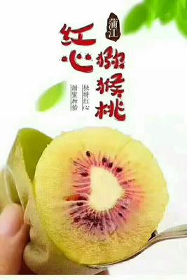 陕西西安绿心猕猴桃 100~120克