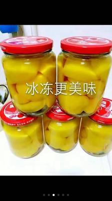 安徽宿州黄桃罐头 12-18个月