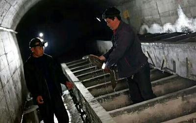 陕西省汉中市城固县张家界大鲵苗