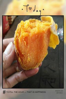 广东阳江鸡蛋黄红薯 3两以上 黄皮