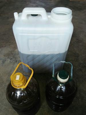 山东德州油葵油