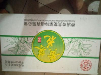 河南南阳黄花菜干 18-24个月
