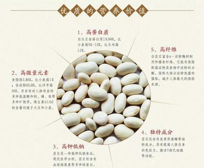 陕西榆林白芸豆 (6斤包邮)