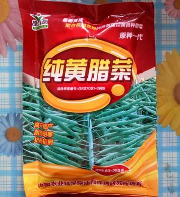 湖南岳阳油菜 3~4两 纯黄腊菜 原种一代 早熟 80-250克