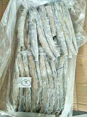 山东青岛东海带鱼 野生 0.5公斤以下