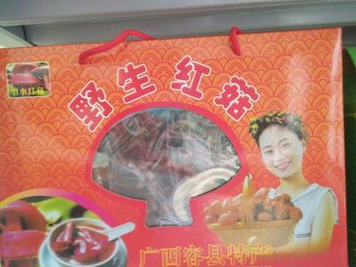 广西玉林干红蘑菇 礼盒装 1年以上