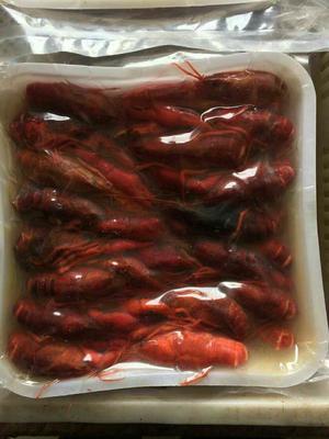 湖南常德红壳小龙虾 45689.0钱 人工殖养