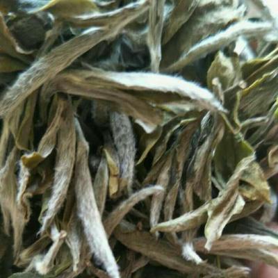 福建宁德福鼎白茶 袋装 特级 2017年珍品荒野白牡丹 玉叶红茶叶