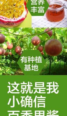 福建龙岩百香果酱 玻璃瓶 12-18个月