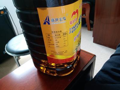 陕西渭南压榨菜籽油 5L/桶