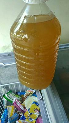 湖北十堰纯粮酒 50度以上 1-3年 图片是黄酒伏汁,白酒总胶壶装,百分百正宗