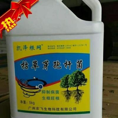 广东汕尾植物生长调节剂
