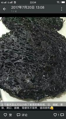江西九江漳浦紫菜