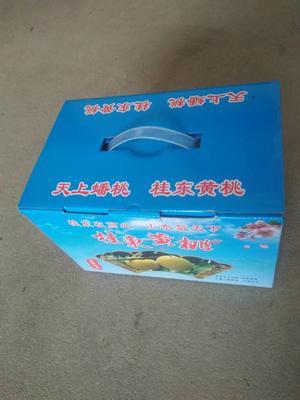 湖南郴州桂东县桂东高山黄桃 55mm以上 3 - 4两