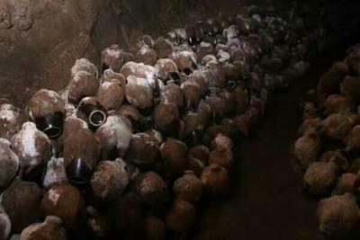 浙江宁波原浆酒 50度以上 5年以上 雅泉竹洞藏老窖