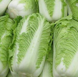 黑龙江哈尔滨黄心大白菜 3~6斤 净菜