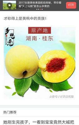 湖南郴州桂东县锦绣黄桃 55mm以上 3 - 4两