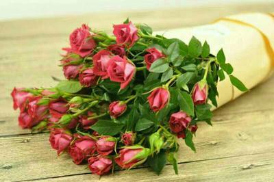这是一张关于多头玫瑰的产品图片