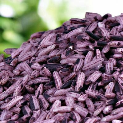 陕西汉中洋县紫米 紫米