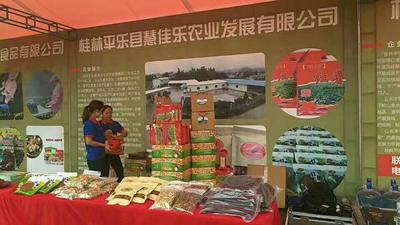 广西桂林红薯干 半年 条状