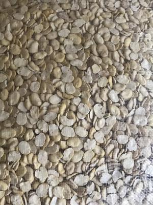 这是一张关于蚕豆的产品图片