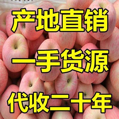这是一张关于红富士苹果 80mm以上 纸袋 条红的产品图片