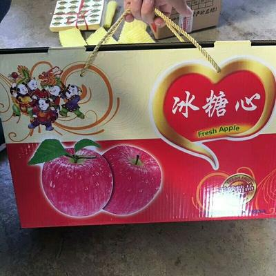 这是一张关于红富士苹果 85mm以上 表光 纸+膜袋的产品图片