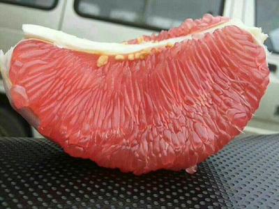 湖北宜昌蜜柚 2斤以上