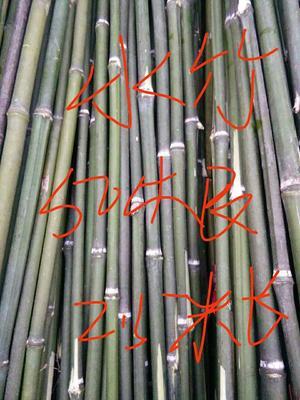 湖南郴州菜架竹