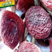 这是一张关于干红蘑菇 1年以上 袋装的产品图片