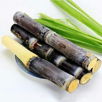 这是一张关于黑皮甘蔗 2 - 3cm 1.5 - 2m的产品图片