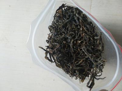 云南临沧老树普洱 袋装 生茶
