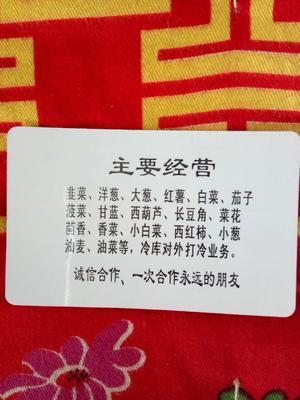 河北省石家庄市藁城区凌峰白菜 3~6斤 净菜