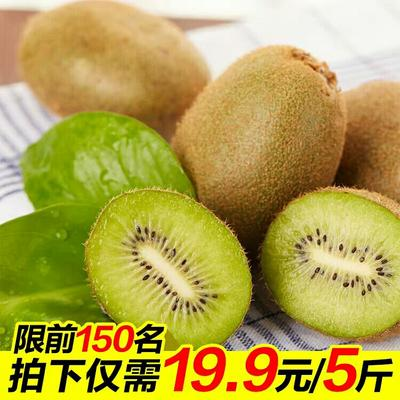 陕西西安周至猕猴桃 50克以下 19.9元5斤包邮 一斤6~8个