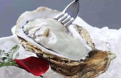 山东威海乳山牡蛎 10-15只/公斤 人工殖养 支持一件代发