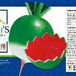 河北省保定市定兴县心里美萝卜 1.5~2斤