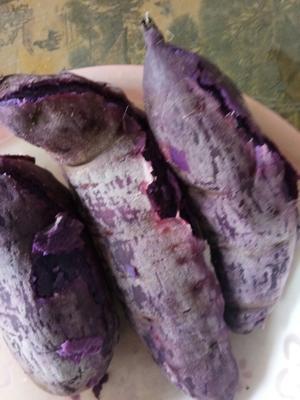 这是一张关于紫罗兰紫薯 3两以上的产品图片