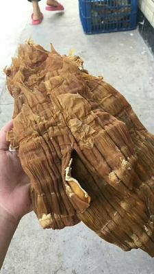 广西桂林山竹笋 9~13cm 笋干