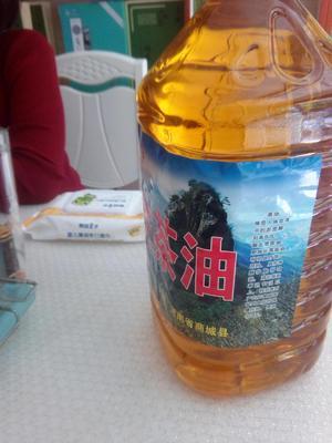 河南信阳茶叶籽油