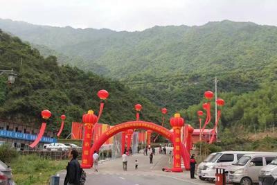 江西省上饶市信州区葛根干 袋装 12-18个月