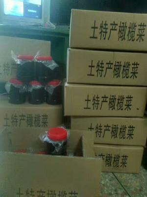 广东汕头橄榄 10g以上 农副加工橄榄菜
