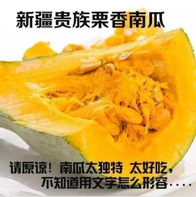 山东省潍坊市寿光市金丝南瓜 2~4斤 长条形