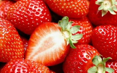 安徽六安美香莎草莓苗 地栽苗 10公分以下